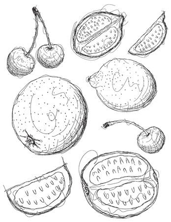 mezcla de frutas: Boceto de fruta mezclada