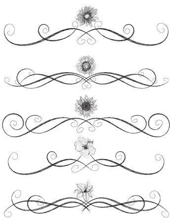 Assorted flower sketches with page rules