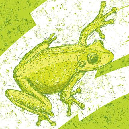 grenouille: Frog dessin sur un fond abstrait. L'?uvre d'art et le fond sont marqu�es sur des couches s�par�es.