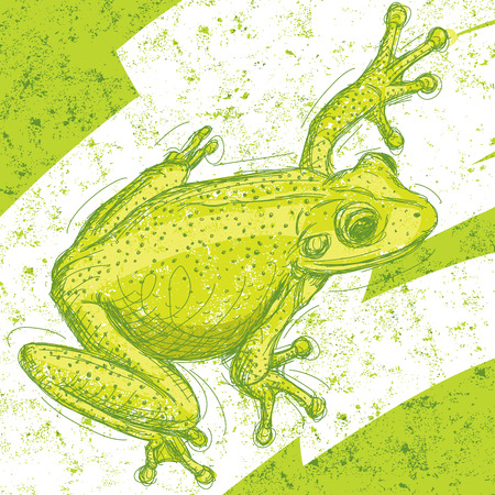 Frog drawing over an abstract background. The artwork and background are on separate labeled layers.