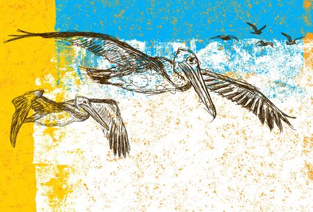 Sketchy pelicans and seagulls, Sketchy pelicans with seagulls flying behind them over an abstract background. Illustration