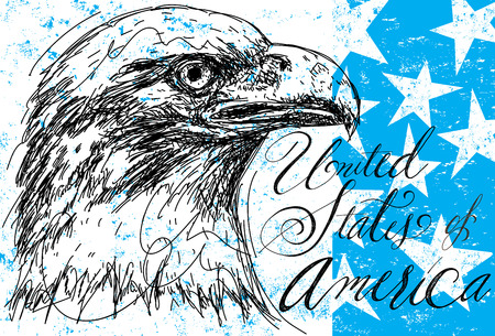 spangled: American Bald Eagle with stars, A sketchy bald eagle over an abstract background with stars.
