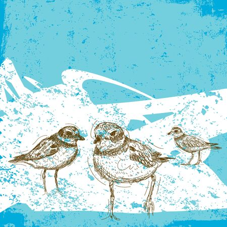 Sketchy Sandpipers, Sketchy Sandpipers over an abstract beach background.