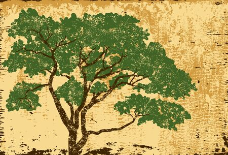 oak trees: Oak tree textured, An oak tree over a distressed background. The tree and background are on separate labeled layers.