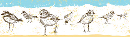 Sketchy Sandpipers over an abstract beach background.
