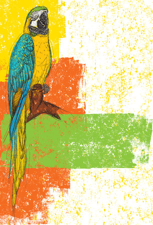 macaw: Blue and Yellow Parrot, A Blue-Yellow Macaw over an abstract background. The parrot and background are on separately labeled layers.