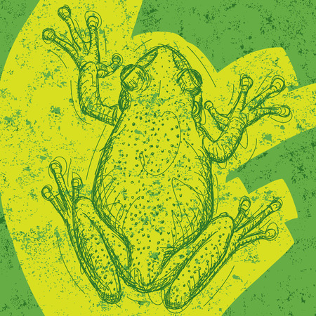 labeled: Frog background, Frog drawing over an abstract background.The artwork and background are on separate labeled layers.