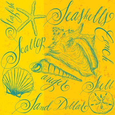 sand dollar: Seashells with calligraphy