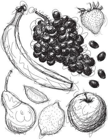 medley: Fruit Medley Sketches