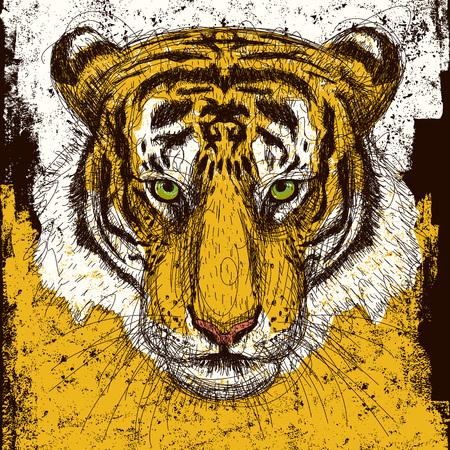 endangered species: Tiger Head