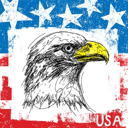 american bald eagle: American Bald Eagle and Flag