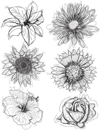 各種花の頭のスケッチ