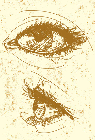 human eye: Female eyes