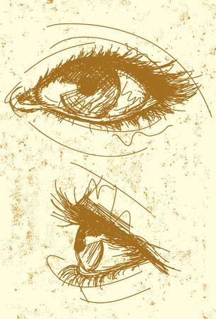 ojo humano: Mujeres ojos