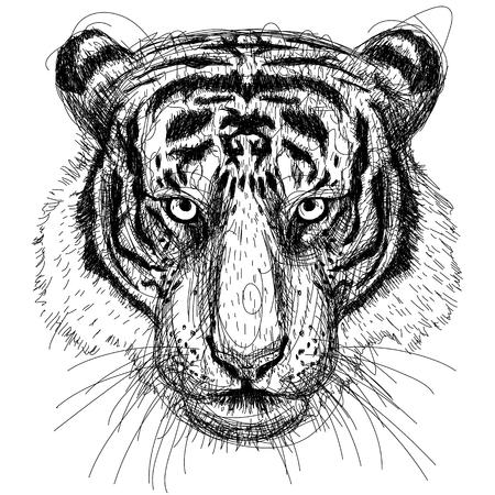 sumatran: Tiger Head