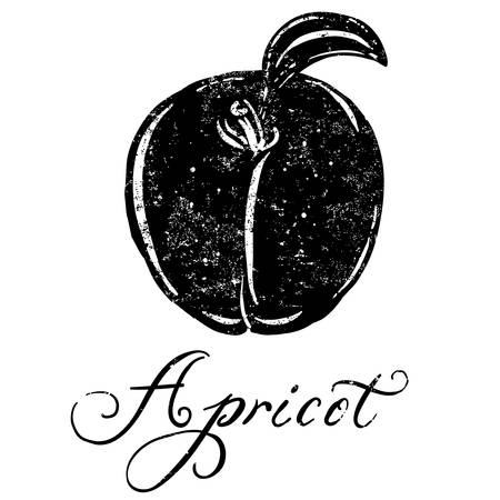 textured: Apricot A textured Apricot icon. Illustration