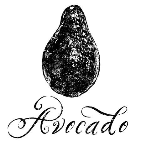 avocado: Avocado Illustration