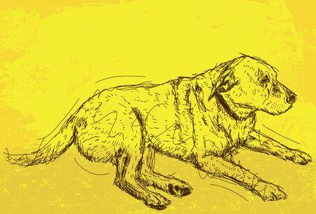 Descanso Dog  Foto de archivo - 67062651