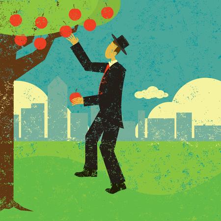 Escogiendo el diseño de banner de frutas colgantes Ilustración de vector