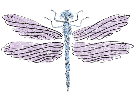 Dragonfly with calligraphic line art Çizim