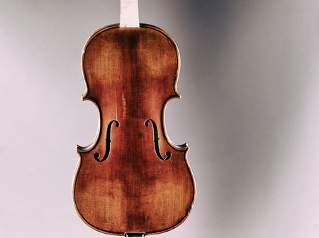 Musical Instrument, a violin on a white - gray background.