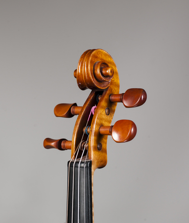 Stringed Musical Instrument, a violin on a white - grey background. Stock Photo