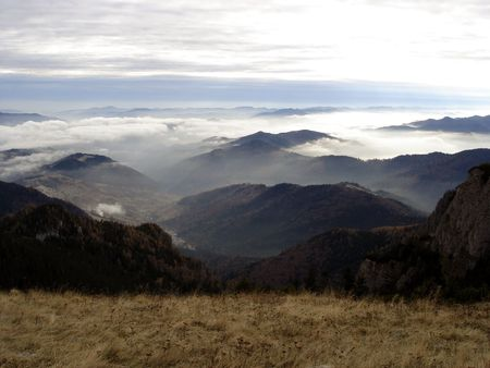 Beautiful Misty Morning Up Into The Mountains photo