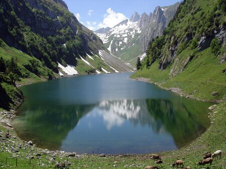 karst: Falensee A Typical Karst Lake In Alpstein Massif Swiss Alps With Cows Grazing                 Stock Photo
