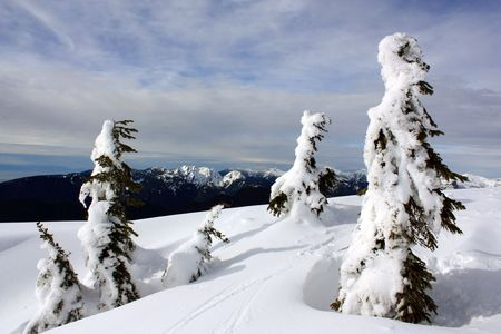 Winter In Coast Mountains, British Columbia, Canada. View From The Top Of Mount Seymour Near Vancouver