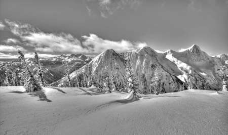 Black and White: Winter Wonderland In Canadian Cascade Mountains, British Columbia Stock fotó