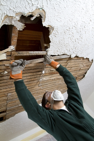 dirty room: Pull Ceiling Lathe a young male pulls down plaster ceiling lathe with his hands  renovation  shot from below