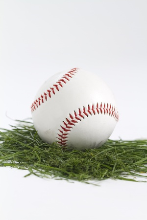 vertical shot of a baseball on cut grass in white studio photo