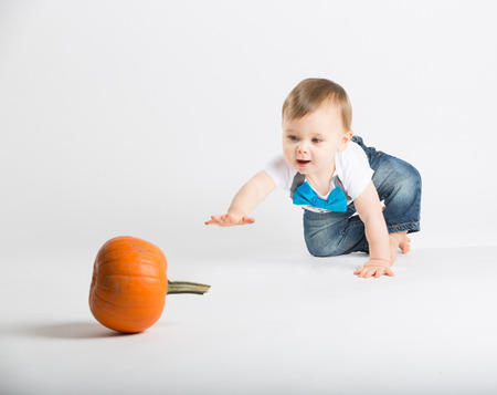 1 year old: a cute 1 year old sits in a white studio setting with a pumpkin. The boy reaches out his arm towards a pumpkin in the distance. He is dressed in Tshirt, jeans, suspenders and blue bow tie