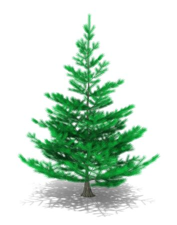 alpha: 3D image of christmas tree on white background.