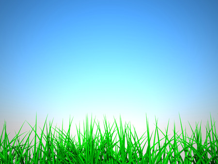 3D image of grass on summer background. Stock Photo