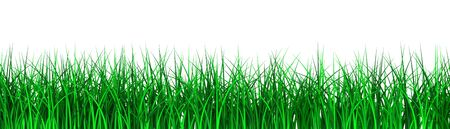 3D image of grass on white bacgkround. Stock Photo