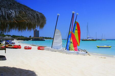 littoral: Palm beach on Aruba island