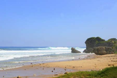 siervo: siervo playa en la isla de Barbados  Foto de archivo