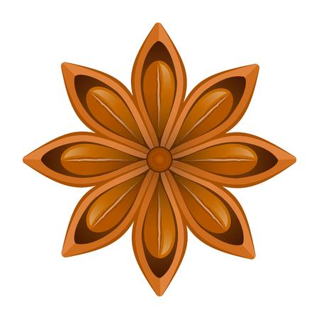 Stella di anice isolato su sfondo bianco. Illustrazione vettoriale Vettoriali