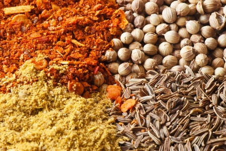 four species: set of four species of colorful spices Caucasian