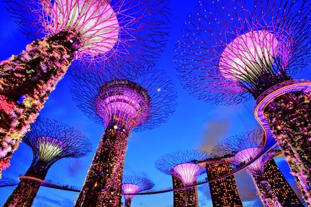 bay: Gardens by the Bay at Dusk, Singapore