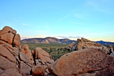 joshua: Overview of Joshua Tree National Park at Sunset, USA