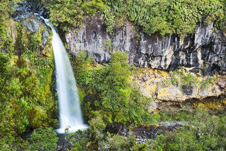 Beautiful Dawson Falls in Egmont National Park, New Zealand