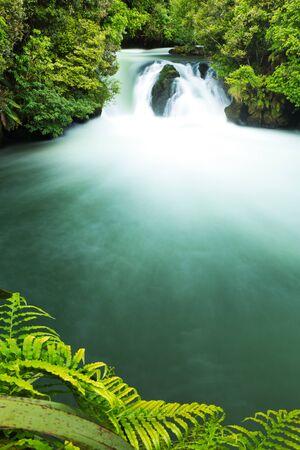 Beautiful Green Tutea Falls, New Zealand Imagens