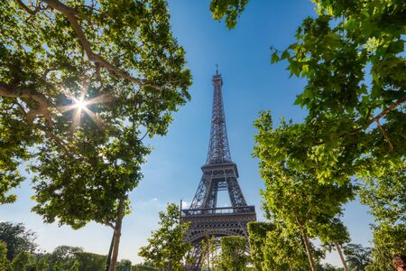 Eiffel Tower in Paris under Sunny Summer Sky, France 写真素材