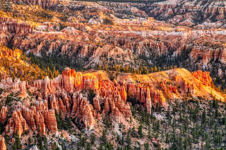 Bryce Canyon National Park at Sunrise, View from Bryce Point, Utah, USA