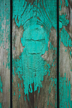 Texture of old wooden fence painted in green