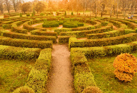Autumn labyrinth of plants - a hedge in the Botanical Garden named Grishko in Kiev - wide shot