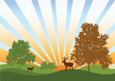 Picture of the nature on sunrise with deers and trees Vector