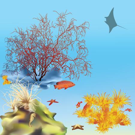 Coral reef with manta. Vector. Mesh.
